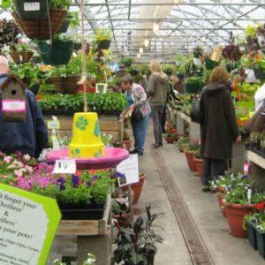 Ozanam hosts plant sale in April